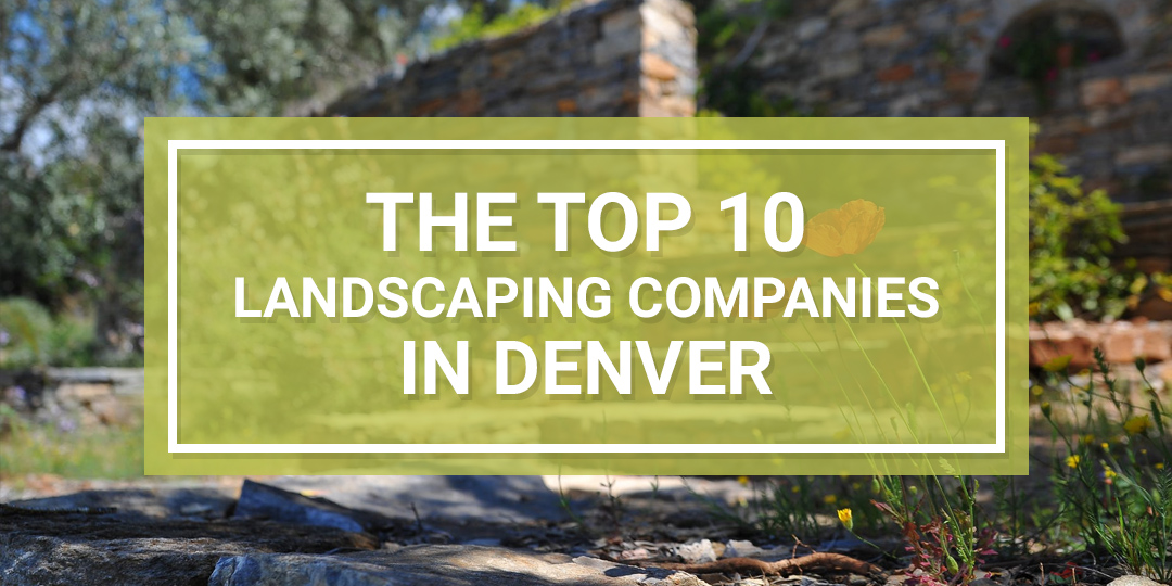 Best Denver Landscaping Companies